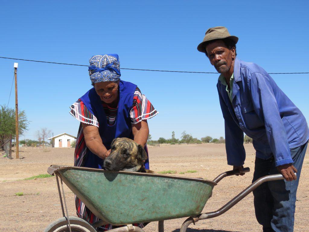 older couple with their dog in a wheelbarrow