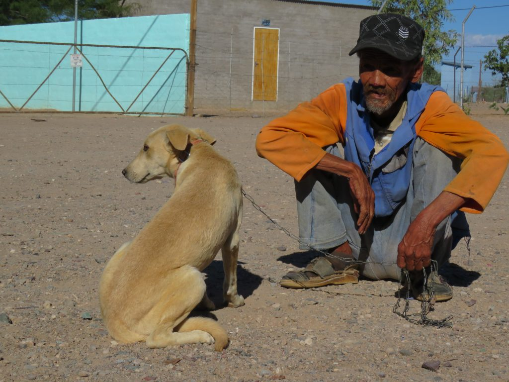 old man waiting with his beautiful dog